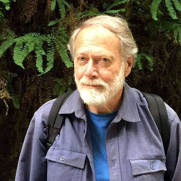 Professor Emeritus David Hollinger