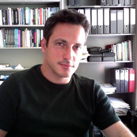 Professor Massimo Mazzotti